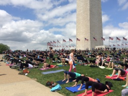 Gratis yoga in Washington