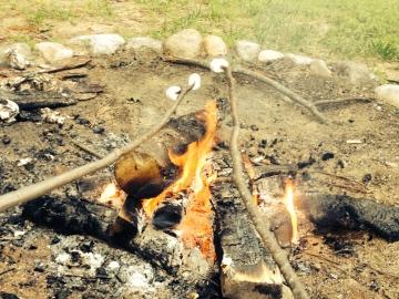 Marshmallows bij het kampvuur