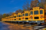 schoolbussen-amerika