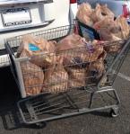 plastic boodschappen tasjes amerika