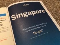 Een nieuw avontuur wacht op ons! Singapore here we come!
